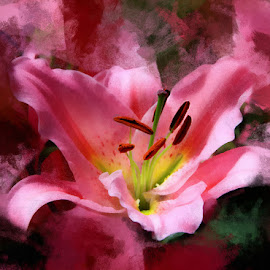 flower by Peter Ching - Digital Art Abstract (  )