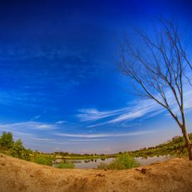Tree Alone  by Hafidz Wahyu - Landscapes Travel ( fisheye, sky, tree, landscape, canon eos, alone,  )