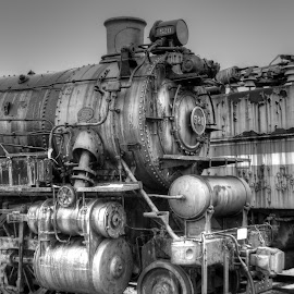 by Mike Roth - Transportation Trains