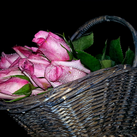 by Dipali S - Instagram & Mobile Android ( bouquet, breast cancer, android, rosa, roses, basket, pink, october, bud, andrography )