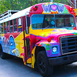 The Magic Bus by Ronnie Caplan - Transportation Other ( kensington market, painted, on the road, colourful, toronto, psychedelic, school bus, windows, tour )