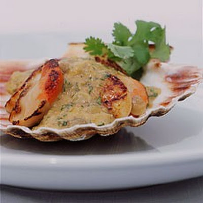 Shaun Hill's Sauteed Scallops with Lentil Sauce