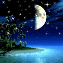 Shimmering Moonlight Live Wall icon