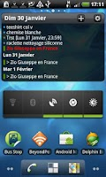 Screenshot of Pure Calendar widget (agenda)