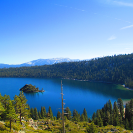 by Karl Brevick - Landscapes Forests ( trees, forest, water. island, lake tahoe )