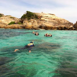Snorkelling Yeay by ChrysAnthemum Tea - Sports & Fitness Swimming ( see, snorkelling, sea, beauty, swimming )