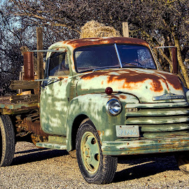 An Aged Chevy by Diane Clontz - Novices Only Objects & Still Life ( chevrolet, aged beauty, winters, letsgoforaride, decay )
