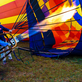 BalloonFest by Carol Plummer - News & Events Entertainment ( hot air, hot air balloon, news, event, balloon,  )