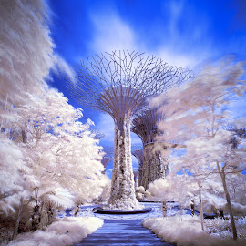 [ Vortex ] by Chester Chen - Buildings & Architecture Architectural Detail ( gbtb, infrared, false colour, long exposure, gardensbythebay, longexposure, singapore )