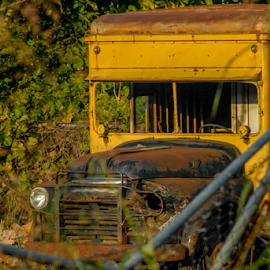 Abandoned Truck by Clark - Worthington - Transportation Other ( truck, abandoned, junk, decay )