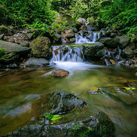 the river by Nie Traveller - Landscapes Travel ( waterfalls, indonesia, forest, rivers, travel photography )