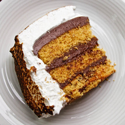 Chocolate Mousse and Marshmallow Icing S'mores Cake