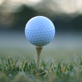 Tee it high, let it fly by Dacon Fitzgerald - Sports & Fitness Golf