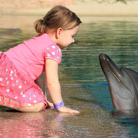 A girl and a dolphin by Marcin Frąckiewicz - Babies & Children Toddlers ( dolphin, girl, dubai, dolphin bay )