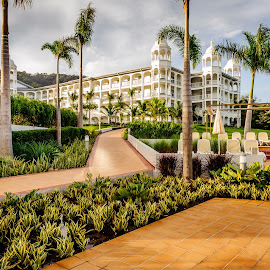 View from the pool by Jack Brittain - Buildings & Architecture Office Buildings & Hotels ( vacation, riu palace, guanacaste, costa rica, landscape, garden )