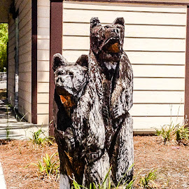 Bear F_cking by Angelo Perrino - Buildings & Architecture Statues & Monuments