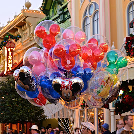 Balloons by Roy Walter - City,  Street & Park  Amusement Parks ( minnie, amusement park, park, mickey, disney, balloons )