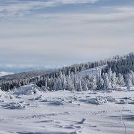 Vitosha by Glyn Thomas Jones - Landscapes Mountains & Hills ( vitosha, mountains, mountain, snow, snowy, bulgaria )