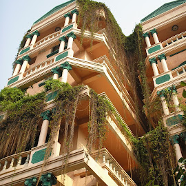 hotel exterior by Christopher Williams - Buildings & Architecture Office Buildings & Hotels ( asia, thailand, hotel, chiang mai, outside )