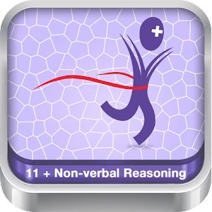 11+ Non Verbal Reasoning