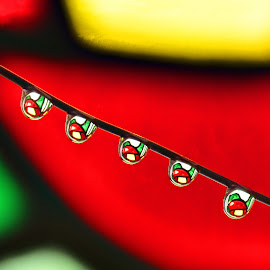 Stained glass drops by Efraim van der Walt - Abstract Macro ( abstract, colour, macro, droplets,  )