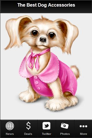 【免費社交App】The Best Dog Accessories-APP點子