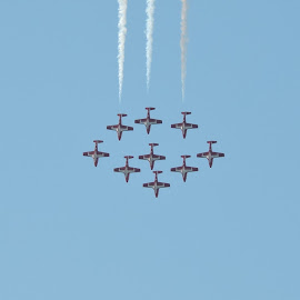 Snowbirds by Nigel Nicholas - Transportation Airplanes
