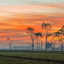 Country Side by KP Singh - Landscapes Prairies, Meadows & Fields ( punjab, village, sidhwan bet, sunrise, ludhiana )