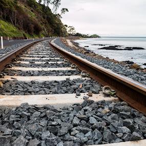 Coastal trainline. by Robert Stanley - Transportation Railway Tracks ( land, device, transportation )