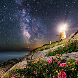The Roses of Pemaquid Point by Jon Secord - Landscapes Starscapes ( new england, maine, stars, lighthouse, astrophotography, milky way )