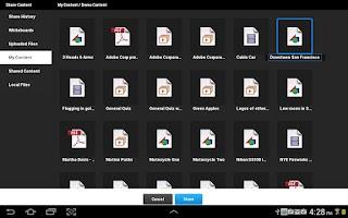 Screenshot of Adobe Connect