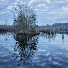 Reflections by Carol Plummer - Landscapes Waterscapes