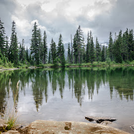 quai lake by Barb Postal - Landscapes Forests ( clouds, reflection, tree, forest, lake )