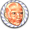 Speed Anatomy (No ads) icon