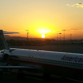sunrise Flight by Carrie Henderson - Transportation Airplanes (  )