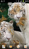 Screenshot of Tiger Live Wallpaper