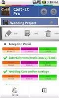 Screenshot of Cost-It Pro