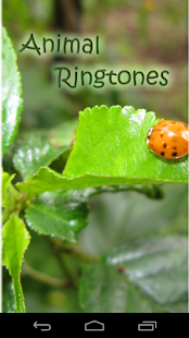 Best Animal Ringtones - screenshot