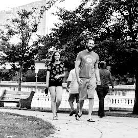 park by Vaibhav Jain - City,  Street & Park  City Parks ( black and white, pa, phili, kelly drive, philadelphia, city park, evening )