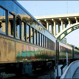 by Connie Payne - Transportation Trains