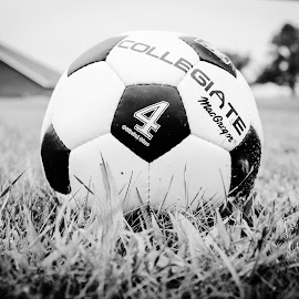 by Jessika Herrmann - Novices Only Objects & Still Life ( football, black and white, sport, happiness, soccer )