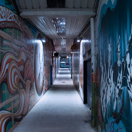 Graffiti tunnel by Zack Brame - Abstract Patterns ( colors, graffiti, street, art, new zealand, tunnel )