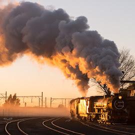 by Aidan McCarthy - Transportation Trains