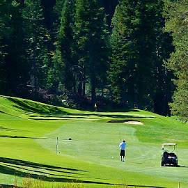 Squaw Valley Golf Course by Samantha Linn - Sports & Fitness Golf (  )