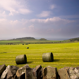 Bute Field rolling to Sea by Wendy Milne - Landscapes Prairies, Meadows & Fields ( field, hay bales, sea, view, landscape )