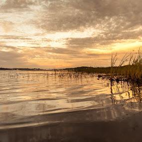 Gold river by Benny Høynes - Landscapes Waterscapes ( water, sweden, colorful, sunset, summer, gold, river )
