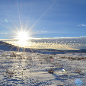 Canada! by Selah Madland - Landscapes Prairies, Meadows & Fields ( cold, bright, snow, white, sun )