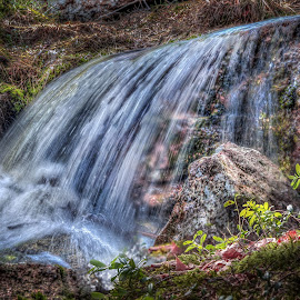 Ghosts in creek waterfall by Morten Golimo - Nature Up Close Water ( drammen, creek, waterfall, woods, norway )