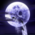 Dolphin Fullmoon icon