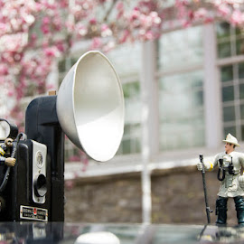 Spring Portraits by Craig Hicks - Artistic Objects Toys ( flowering tree, reflections, brownie, firemen, bokeh )
